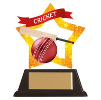 Mini-Star Cricket Acrylic Plaque 100mm : New 2019