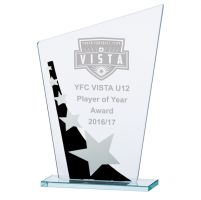 Jade Cosmic Star Glass Trophy Award Black and Silver 205mm