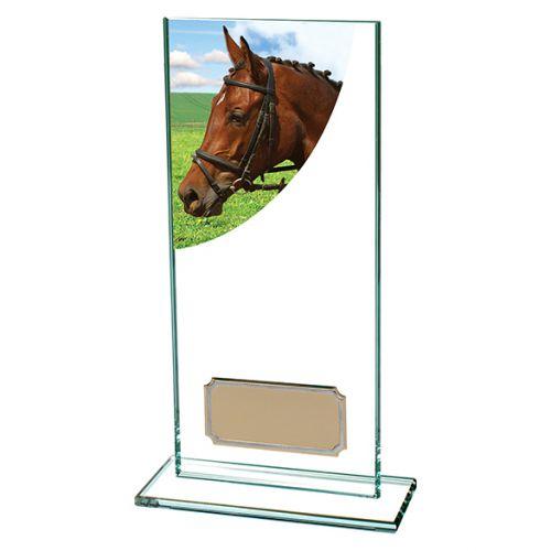 Equestrian Colour-Curve Jade Glass 180mm : New 2019