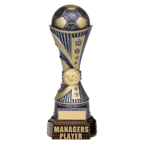 All Stars Football Managers Player Antique Silver and Gold 260mm : New 2019
