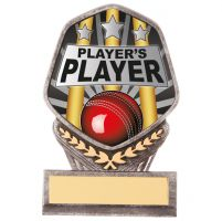 Falcon Cricket Players Player Trophy Award 110mm : New 2020