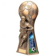 Trailblazer Male Coach Player Trophy Award Classic Gold 265mm : New 2020
