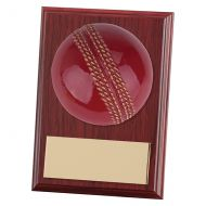 Horizon Cricket Plaque 100mm : New 2019