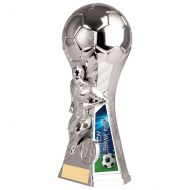 Trailblazer Male Coach Thank You Trophy Award Silver 190mm : New 2020