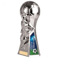 Trailblazer Male Coach Thank You Trophy Award Silver 230mm : New 2020