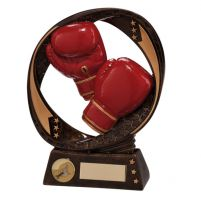 Typhoon Boxing Trophy Award 170mm