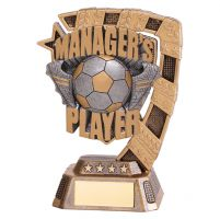 Euphoria Football Managers Player Trophy Award 130mm : New 2019