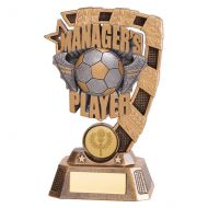 Euphoria Football Managers Player Trophy Award 150mm : New 2019