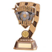 Euphoria Football Managers Player Trophy Award 180mm : New 2019