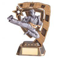 Euphoria Karate Trophy Award 130mm : New 2019