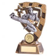 Euphoria Karate Trophy Award 150mm : New 2019