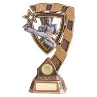 Euphoria Karate Trophy Award 210mm : New 2019