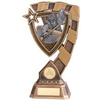 Euphoria Snooker Male Player Trophy Award 210mm : New 2020
