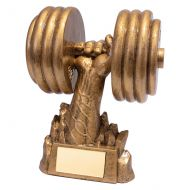 Power! Weightlifting Trophy Award 170mm : New 2019