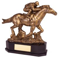 Aintree Equestrian Racing Horse Trophy Award 220mm : New 2019