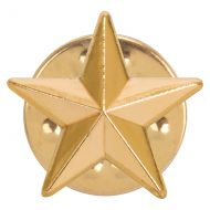 3D Gold Star Pin Badge 12mm : New 2019