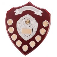 Cascade Annual Shield Trophy Award 305mm