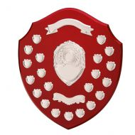 The Ultimate Annual Shield Trophy Award 400mm