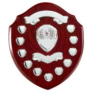 The Jubilation Annual Shield Trophy Award 320mm