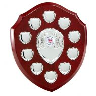 The Triumph Annual Shield Trophy Award 220mm