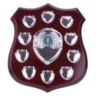 Illustrious Annual Shield Trophy Award 215mm