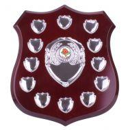 Illustrious Annual Shield Trophy Award 255mm