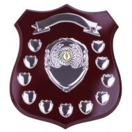 Illustrious Annual Shield Trophy Award 295mm