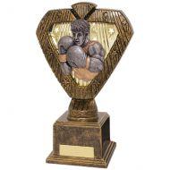 Hero Legend Boxing Award 200mm