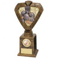 Hero Legend Boxing Award 235mm