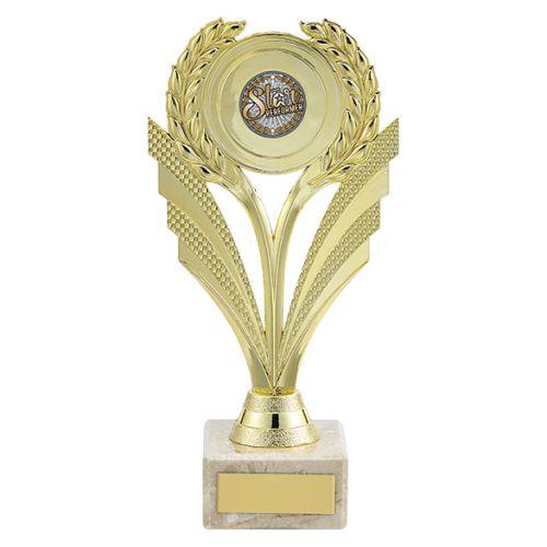 Amor Multi-Sport Trophy Award Gold 195mm : New 2019