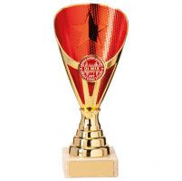 Rising Stars Premium Plastic Trophy Award Gold and Red 170mm : New 2020