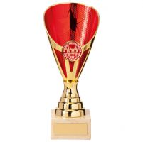 Rising Stars Premium Plastic Trophy Award Gold and Red 185mm : New 2020